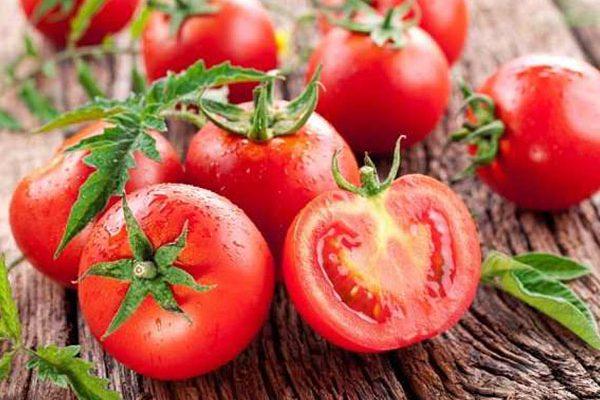 produk-tomat (3)